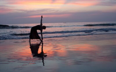 Quel style de yoga pour moi?